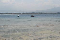 snorkel gili island