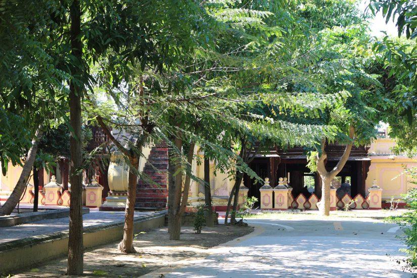 Shwe in Bin