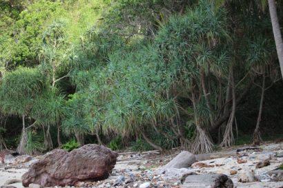 koh Ngai Island