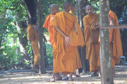 Monks in an orange dress