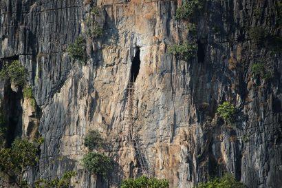 vang Vieng bats
