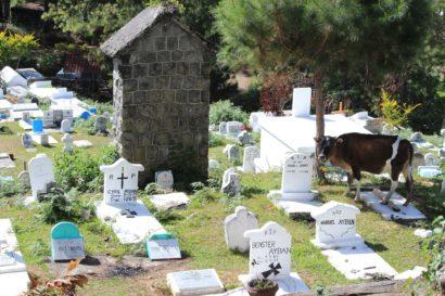 cimetière de Sagada