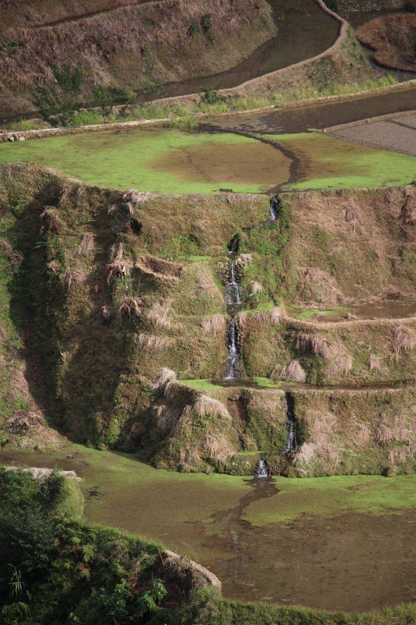 Rizières de Banaue