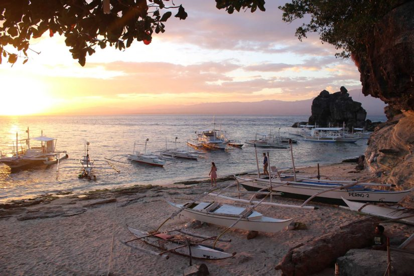 Apo Island voyager aux Philippines