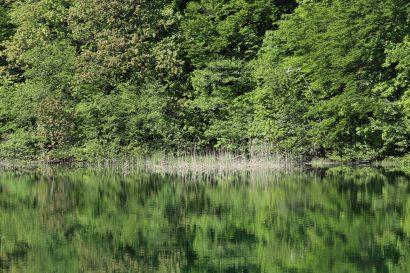 lac Prošćansko