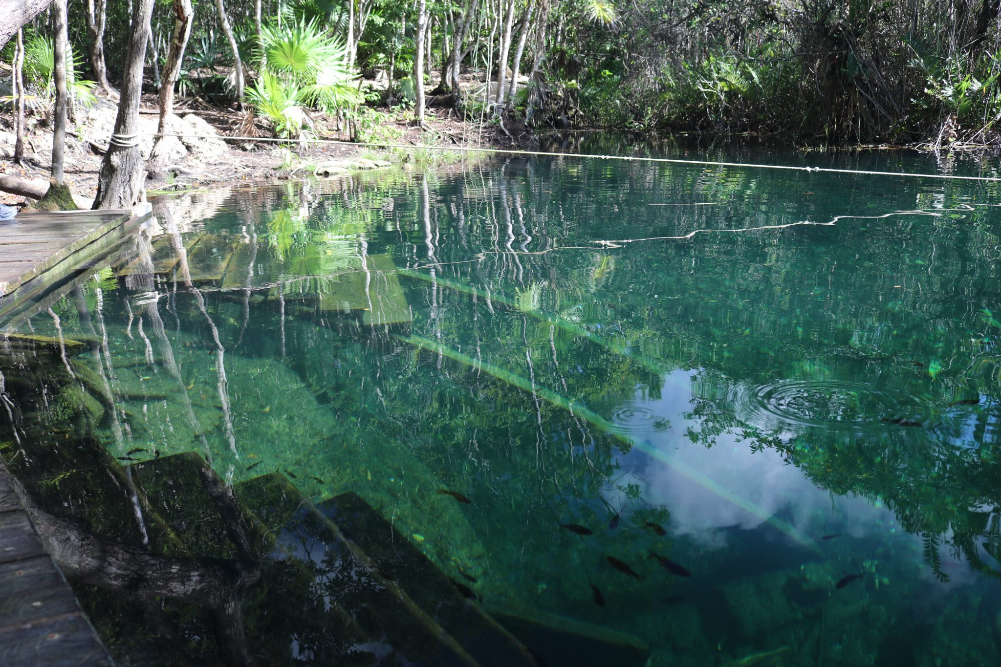Escondido Cenote