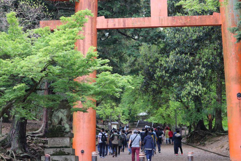 Nara koen Kōfuku-ji