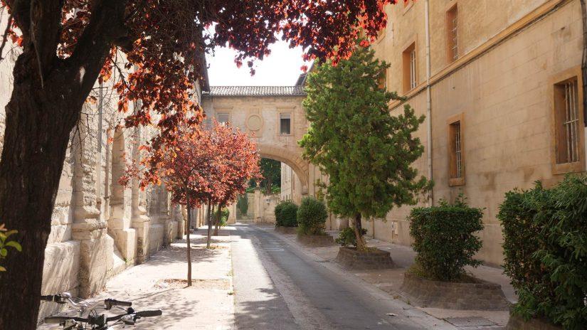rue Frédéric Mistral Avignon